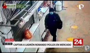 Cañete: captan a ladrón cuando robaba bolsa con pollos