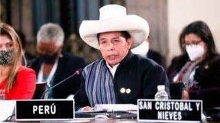 """Pedro Castillo ante la OEA: """"Nosotros no somos comunistas"""""""