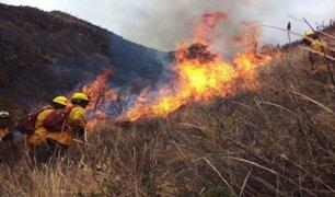 Incendio forestal en Cusco: llamas devastaron más de 850 hectáreas de pastizales