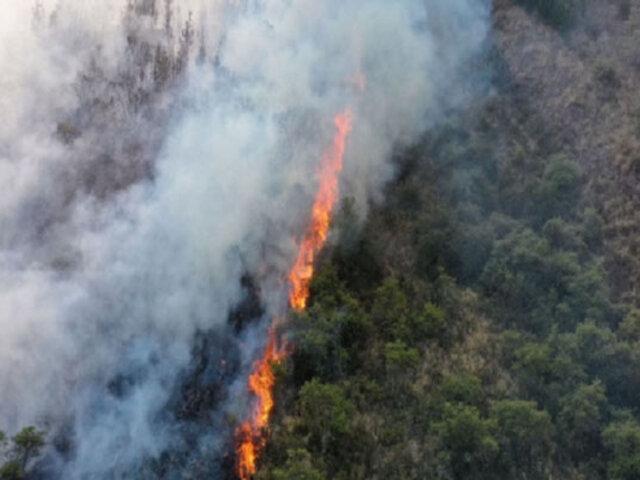 Cusco: nuevo incendio forestal avanza incontenible por los fuertes vientos