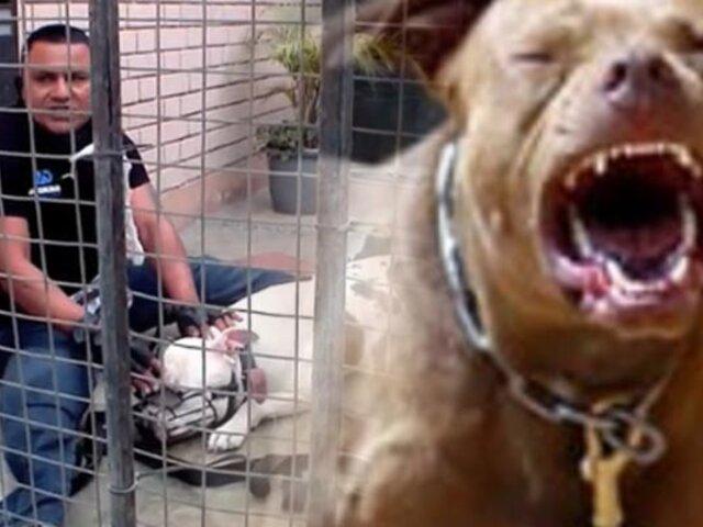 """Único y Extremo: Un día con el """"Rehabilitador"""" de perros agresivos"""