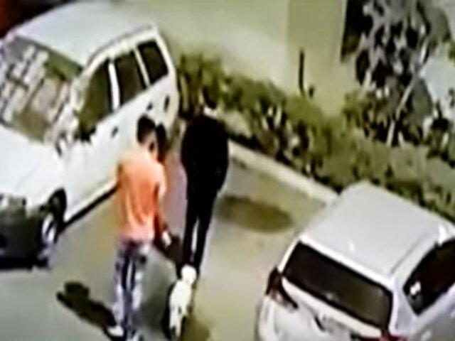 Surquillo: delincuentes fingen pasear perro para robar en departamento