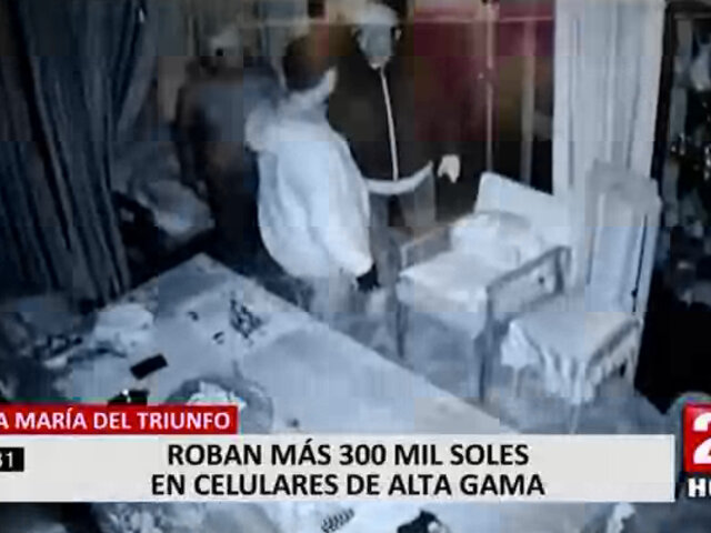 Delincuentes ingresaron a tienda y robaron 300 mil soles en productos