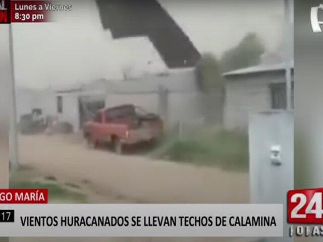 Tingo María: vientos huracanados causan destrozos