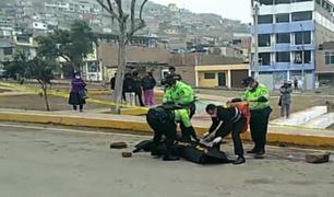 VMT: dos muertos dejó enfrentamiento durante celebración en parque
