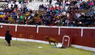 Huari: torero cómico perdió una oreja tras recibir cornada