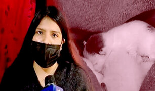 Callao: activista por los animales fue víctima de estafa tras pedir préstamo al banco