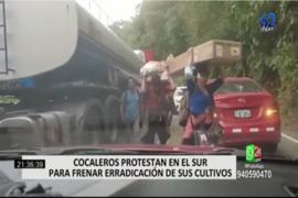 Cocaleros protestan en el Sur para frenar erradicación de sus cultivos