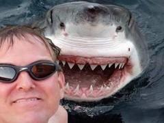 FOTOS : los 8 selfies más extremos que podrás ver
